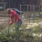 il Preparation South Garden