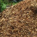 Wood chips donated by the city