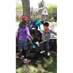 Shoveling Compost