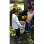 Team Compost!