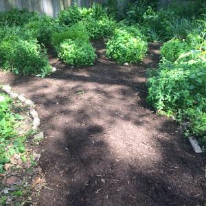 Children's Hand Garden After Restoration
